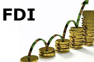Các hình thức góp vốn đầu tư nước ngoài vào Việt Nam?